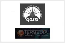 Cession de Gosis  pure   player industriel en Cloud Computing IAAS Infrastructure as a Service pour l'hébergement et le maintien en conditions opérationnelles des applications métiers à Tersedia fournisseur de solutions IT spécialisé dans les offres Multi Cloud et les prestations de Services Managés